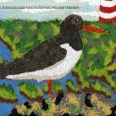 Schräge Vögel und anderes Geflügel